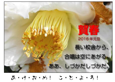 20161_4